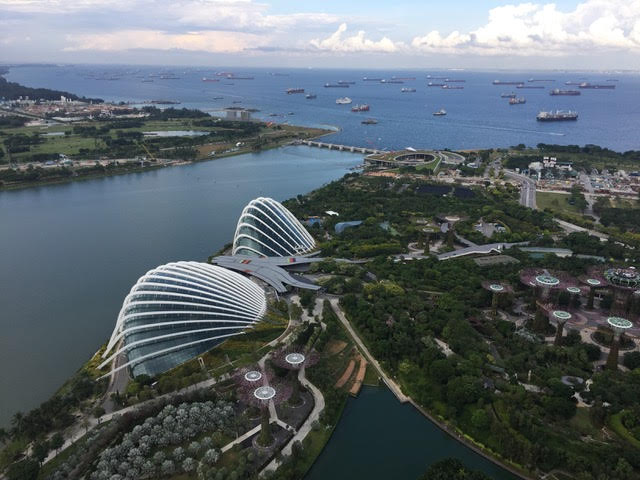Aerial view of Singapore's Gardens by the Bay